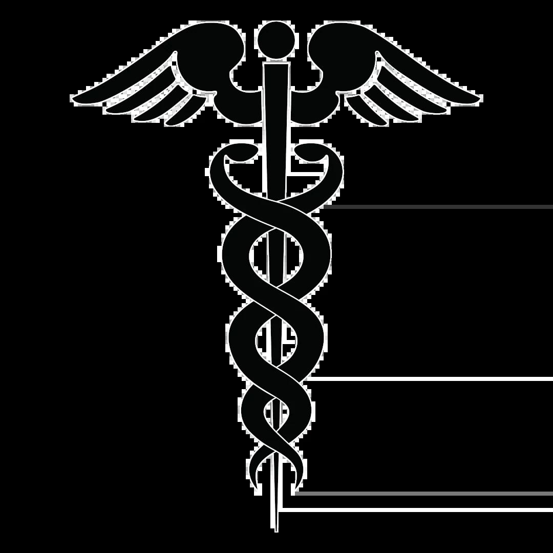 Это один из самых древних и многозначных символов. Две змеи, обвивающиеся вокруг жезла, считаются символом ключа отворяющего границу между тьмой и светом, добром и злом. Змея — вечный союз жизни и смерти.
