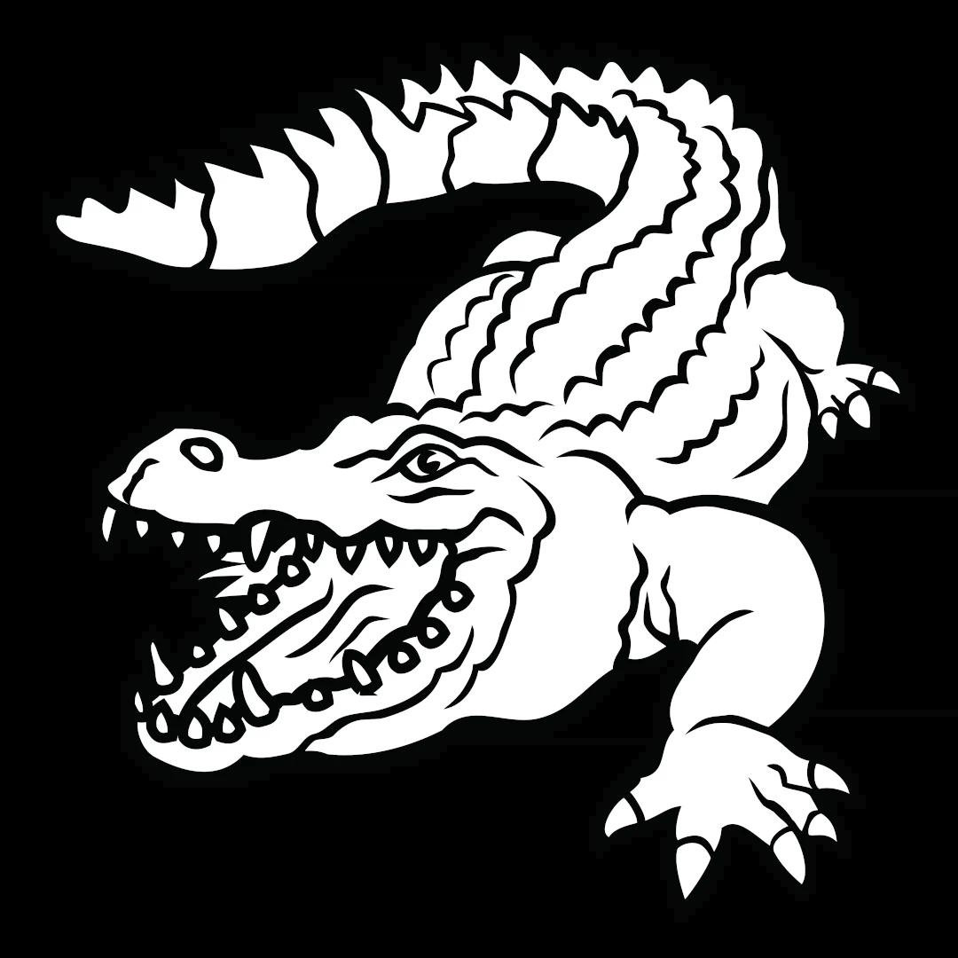 Символизирует дуализм всего мироздания. С одной стороны, крокодил является воплощением злобы и коварства, с другой — символизирует силу и мудрость. Обладая способностью жить и на земле и в воде, олицетворяет двойственную природу человека.
