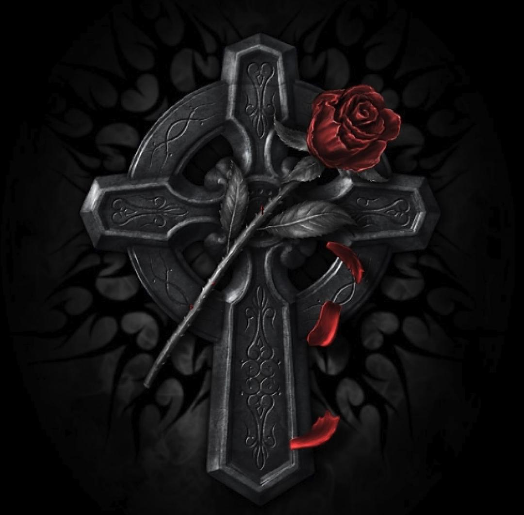 Розенкрейцеры – Орден розы и креста — тайное общество, основанное в 15 веке в Германии Христианом Розенкрейцем, хотя представители ордена говорят, что он существовал практически всегда. Широко используется аббревиатура A.M.O.R.K (античный мистический орден розы и креста).